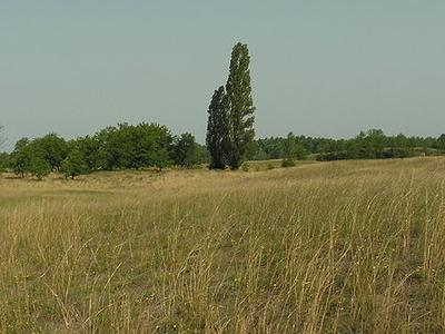 Kiskunság National Park - Hungary