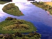 Kissimmee River