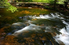 Kitchen Creek In The Glen Leigh Valley, A Part Ricketts Glen State Park