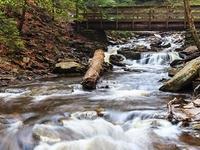 Cocina Creek