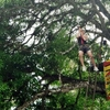 KK Adventure Park - Sabah