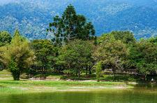 KL - Lake Gardens