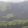 Shola Forests Of Kudremukh