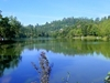 Kodaii Lake