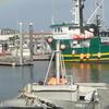 Kodiak Harbor After The Storm Alaska
