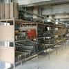 Kokerei Zollverein Tool's