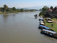 Kok río