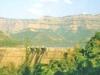 View Of Kolkewadi Dam