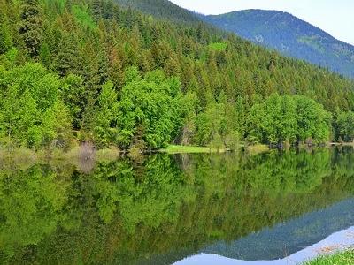 Kootenai Park View