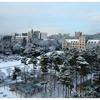 Korea University Seongbuk District