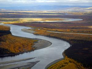 Río de Koyukuk