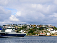 Norway's Arctic Awakening- Spring Special