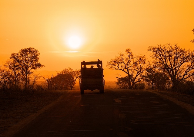 Kruger National Park - Private Game Drive Photos