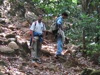 Kudremukh Parque Nacional Trekking