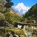 Kusum Kanguru From Thado Kosi Bridge - Nepal