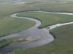 Kuzitrin Río