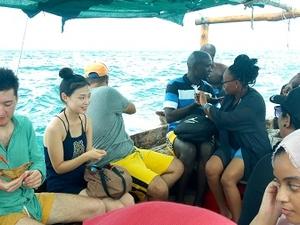 Kwale Island (Safari Blue) Fotos