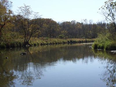 Kyte River