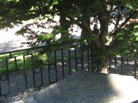 Freemason's Grave