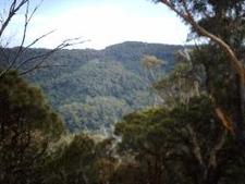 Kembla West Seen From Mount Kembla Summit Track