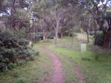 Ken Ausburn Track