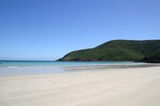 Basil Bay