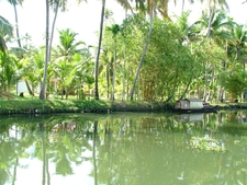 Kerala Views