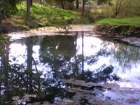 Kimberley Warm Springs