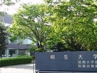 Universidad Kiryu