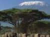Kilimanjaro Mountain Africa