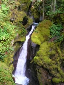 Ladder Creek Falls