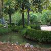 La Devesa Park