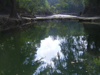 Lafayette Blue Springs State Park