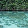 Lagoon In Raja Ampat - Papua Province
