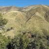 Laguna Mountains