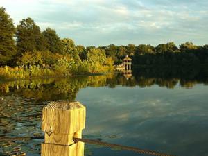 Lake Artemesia