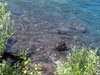 The Lake's Brilliantly Colored Water