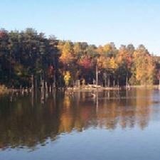 Lake Curtis