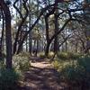 Lake Delancy To Rodman Reservoir Trail