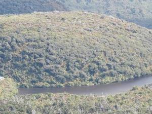 Lake Dive Hut