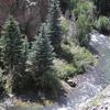 Lago Tenedor río Gunnison