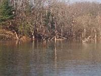 Lake Frederick