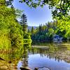 Lake Fulmor Day Use Area