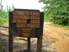 Lake George Trail