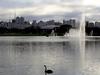 Lake In Ibirapuera Park