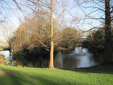 Lake In Springfield Park