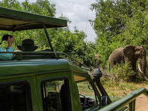 4 Days Tanzania Budget Camping Safari Photos