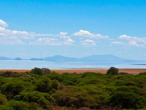 5 Day Tanzania Lodge Safari Photos
