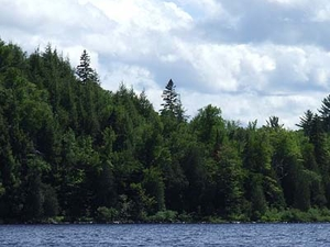 Lake Michigamme