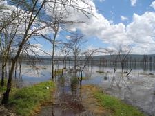 Lake Nakuru Park Entrance